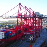 Exolgan will have nine Liebherr STS cranes