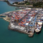 Ports of Auckland could become the first automated container port in New Zealand