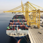 Ocean Alliance members amongst others have suspended calls in Qatar