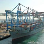 The port managed growth among all cargo segments