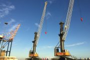 Port Elizabeth receives two Liebherr MHC just in time for citrus season