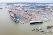 Gothenburg volumes up 8% as exports continue to flow