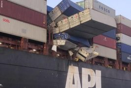Insurers scrutinise causes of container casualties