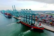 Tanjung Pelepas receives four more quay cranes