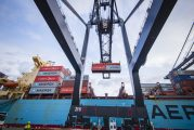 Container volumes stabilise at Port Houston