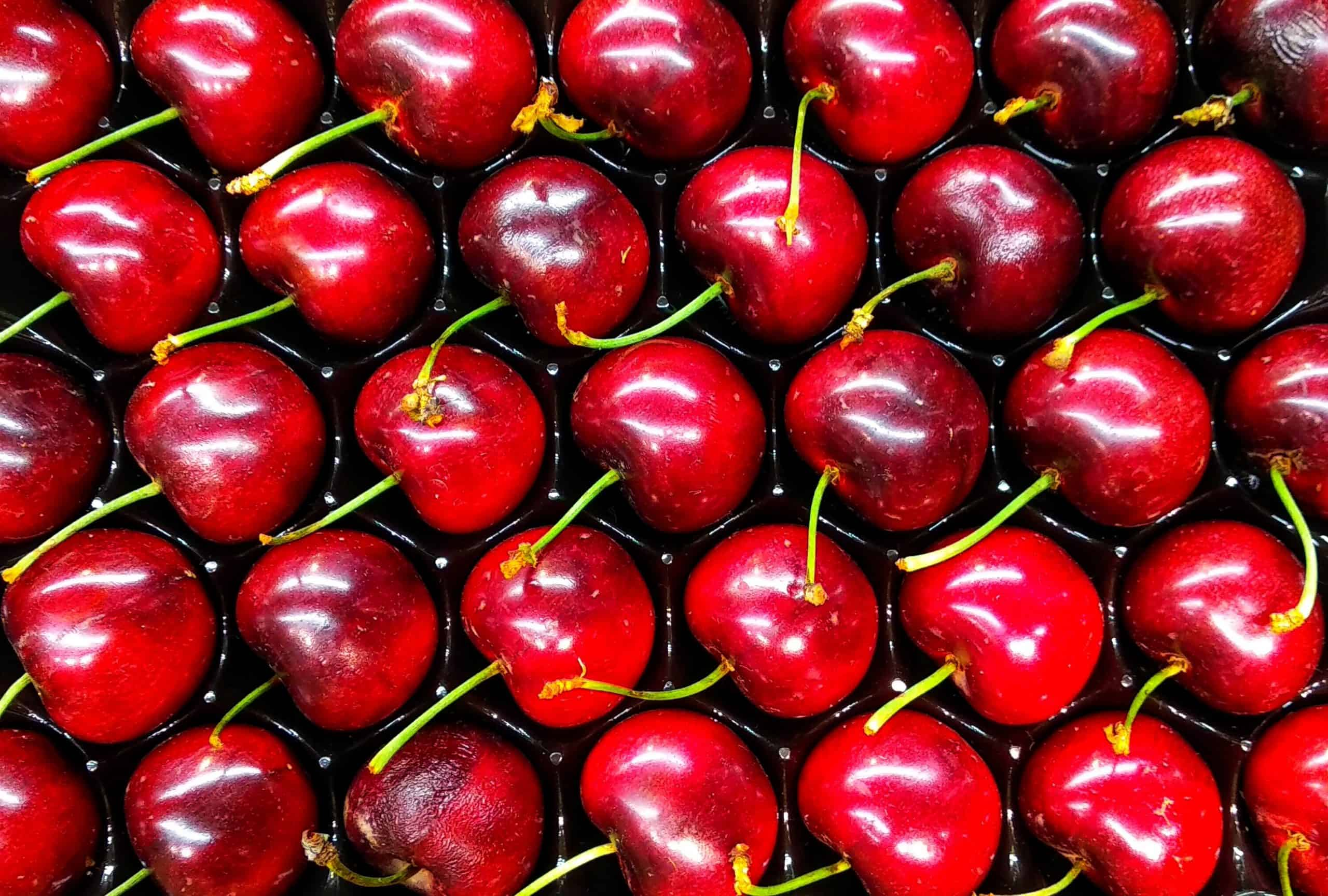 MSC introduces express service for fresh fruit between Chile and Asia