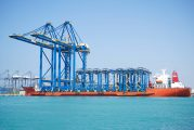 COSCO Shipping Ports acquires 20% of RSGT's shares