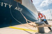 Strong container volumes limit losses at Port of Antwerp