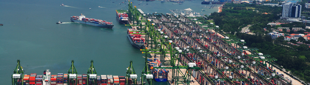 PSA Singapore responds to supply chain disruptions with cargo solutions