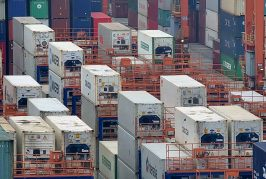 Hongkong International Terminals launches remote reefer container monitoring system