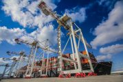 TC3 terminal operating at full capacity with eight Liebherr cranes