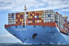 Maersk makes short-term adjustment to services to help mitigate Felixstowe bottlenecks